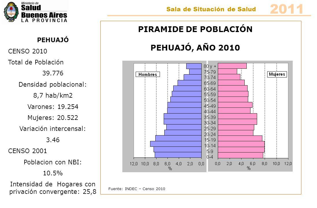 Fuente: INDEC – Censo 2010 PIRAMIDE DE POBLACIÓN PELLEGRINI, AÑO 2010 PELLEGRINI CENSO 2010 Total de Población 5.887 Densidad poblacional: 3.2 hab/km2 Varones: 2.916 Mujeres: 2.971 Variación intercensal: -2.43 CENSO 2001 Poblacion con NBI: 8% Intensidad de Hogares con privación convergente: 16,8% 2011 Sala de Situación de Salud