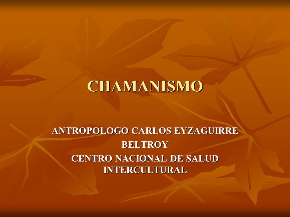 En la 2ª mitad del siglo XIX en que se encuentran los primeros estudios sobre el chamanismo, aunque el término chamán ya se conocía desde el finales del siglo XVIII.