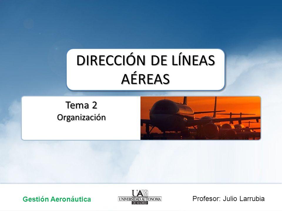 La Organización Gestión Aeronáutica Dirección Líneas Aéreas