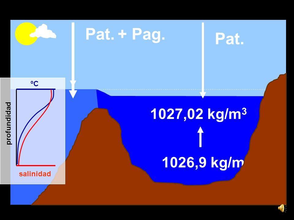 15,6ºC 36,5 1,44 x 1016 kg de sal 1026,9 kg/m 3 1027,02 kg/m 3 ºC salinidad profundidad Pat. + Pag.