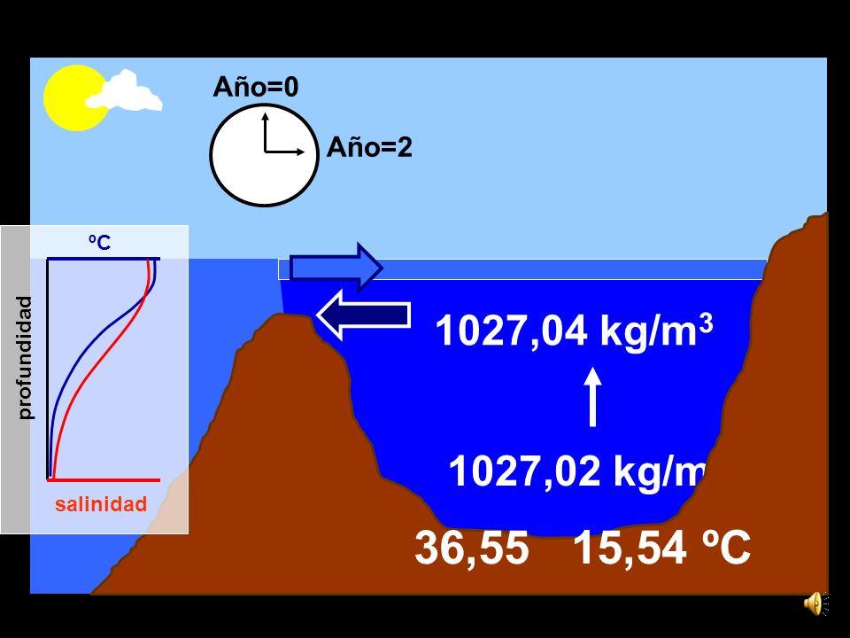 15,6ºC 36,5 1,44 x 1016 kg de sal 1027,02 kg/m 3 1027,04 kg/m 3 ºC salinidad profundidad Año=0 Año=2 36,55 15,54 ºC