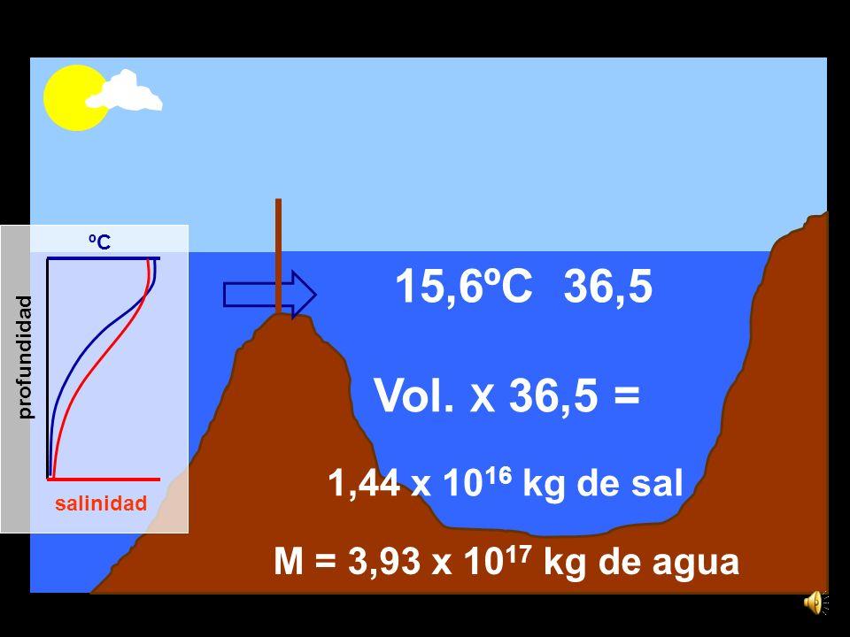 15,6ºC 36,5 1,44 x 10 16 kg de sal Vol.