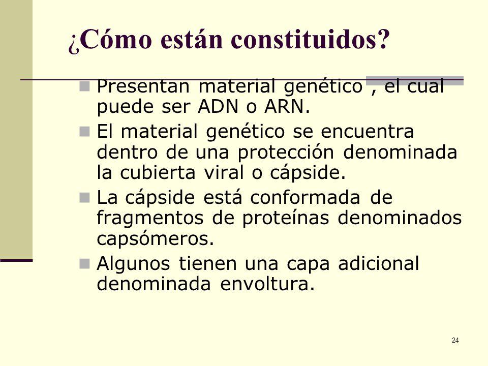 24 ¿Cómo están constituidos.Presentan material genético, el cual puede ser ADN o ARN.