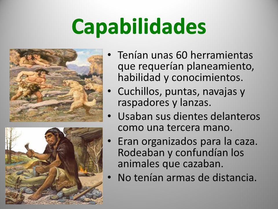 Costumbres Los neandertales cuidaban a los enfermos, viejos y heridos.
