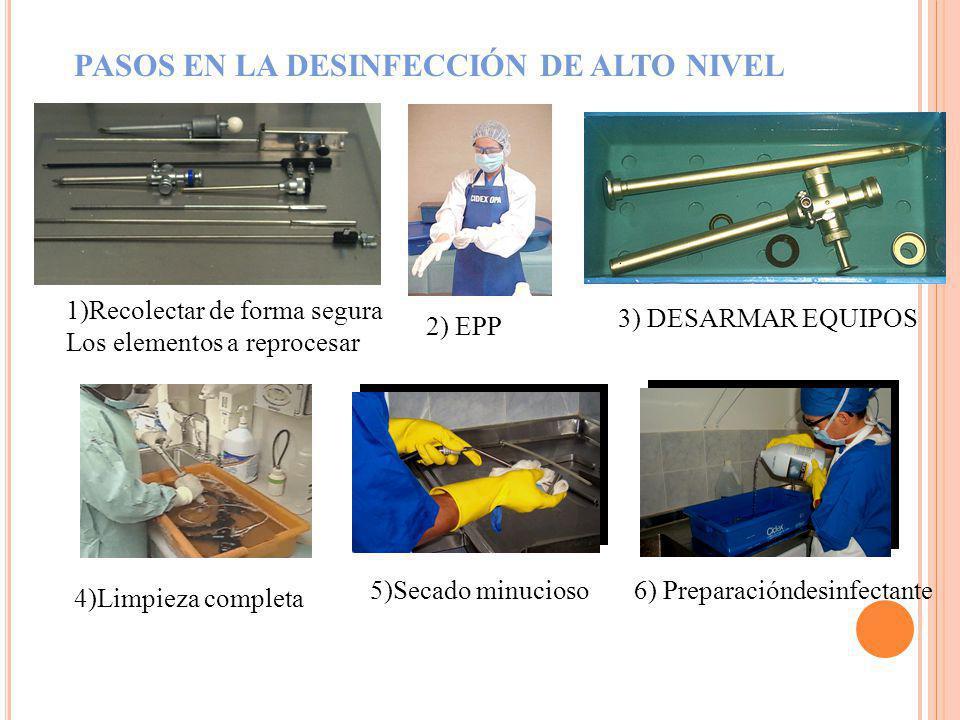 1.Lea 2.