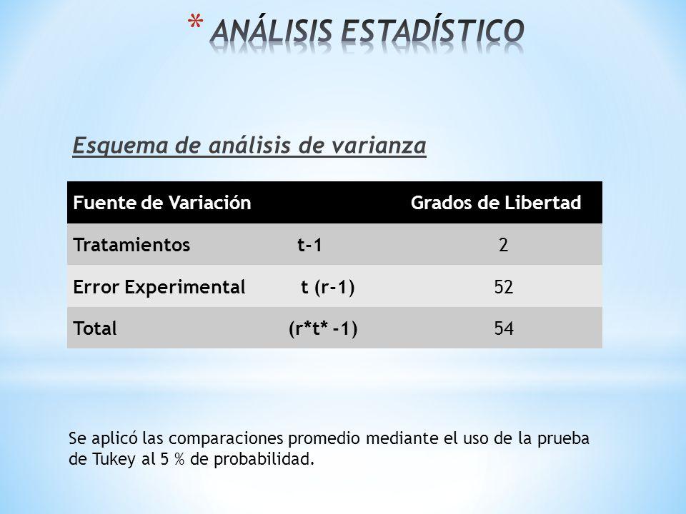 * VARIABLES ESTUDIADAS Pesos de la Hembra Condición Corporal Nacidos Vivos Consumo de Alimento Peso de la Camada Fertilidad