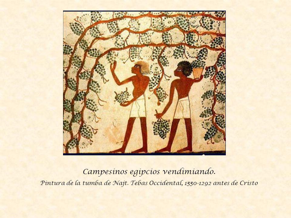 Supervisores midiendo la cosecha de trigo en el Antiguo Egipto Mural de la tumba de Menna.