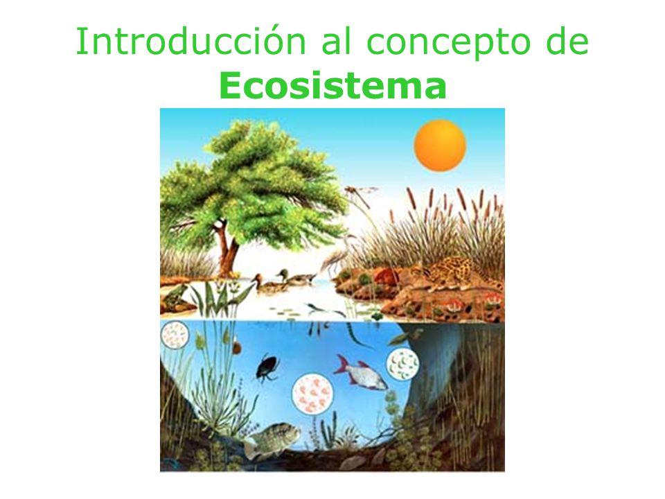 Ecosfera Ecosfera, biosfera y ecosistema.Los biomas.