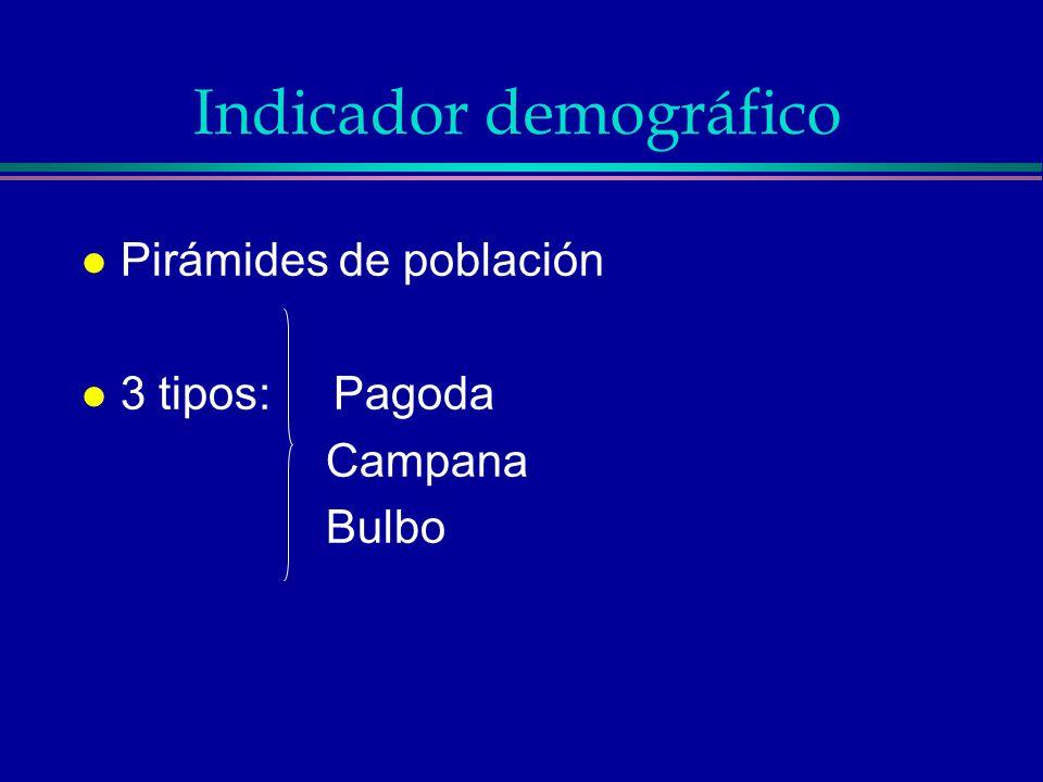 TIPO PAGODA l Tiene base ancha y muestra, además, una disminución rápida hacia el vértice.