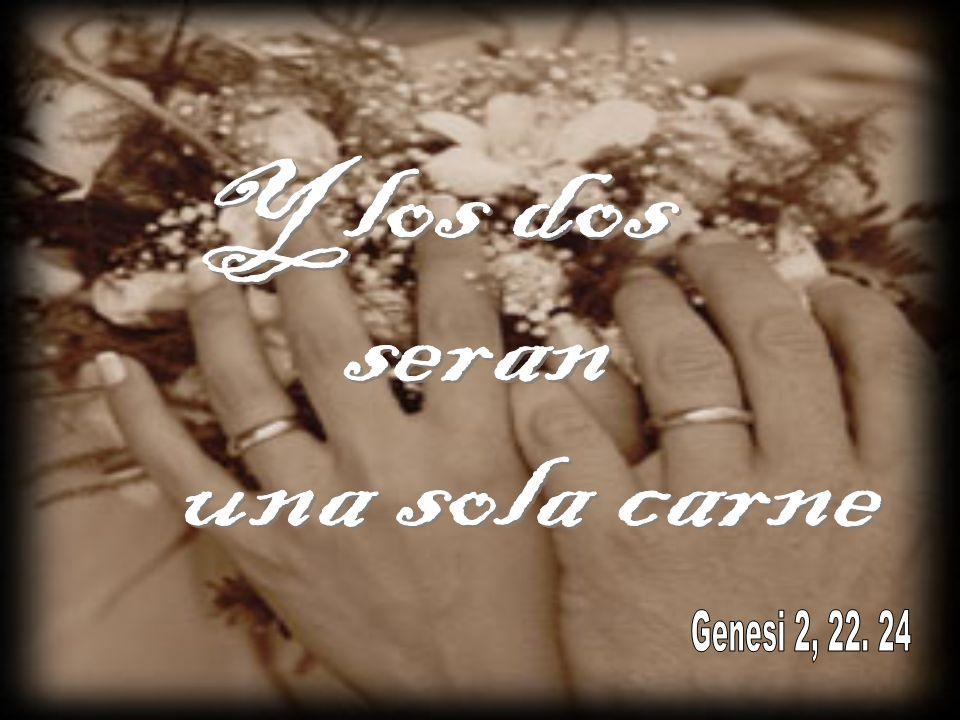 El amor humano es la expresión máxima del amor de Dios amor «Fuerte como la muerte » que «las grandes aguas no pueden apagar » (Ct 8,6-7).