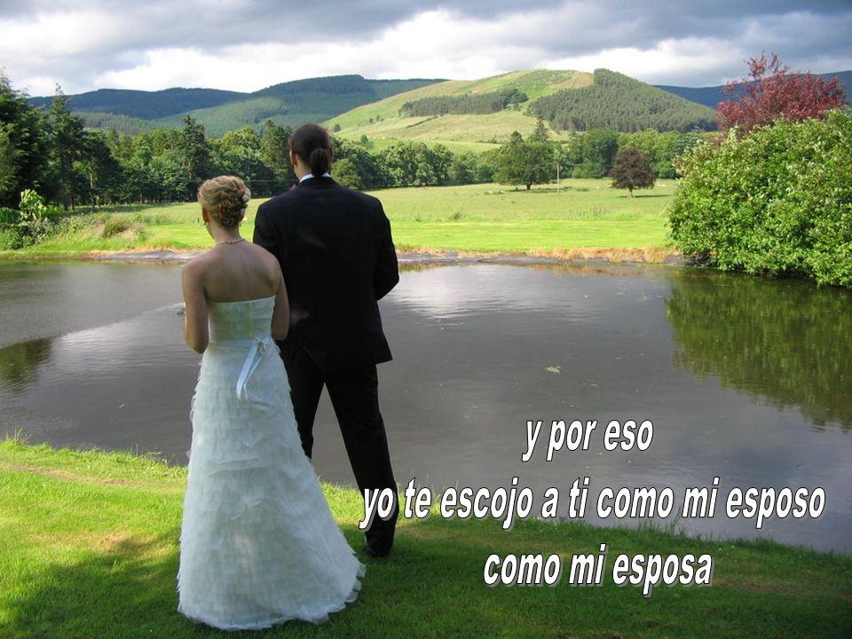 El sacramento del matrimonio no es en primer lugar un esfuerzo del hombre : es un don del Señor.