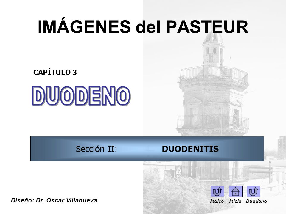 IMÁGENES del PASTEUR Imagen 0270.FGDC – duodenoscopía.