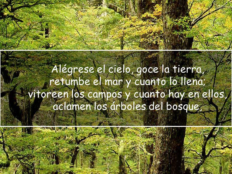 Alégrese el cielo, goce la tierra, retumbe el mar y cuanto lo llena; vitoreen los campos y cuanto hay en ellos, aclamen los árboles del bosque,