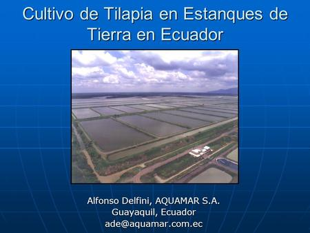 Caracter sticas de los peces ppt video online descargar for Proyecto de tilapia en estanques