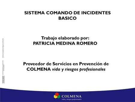 SISTEMA COMANDO DE INCIDENTES BASICO