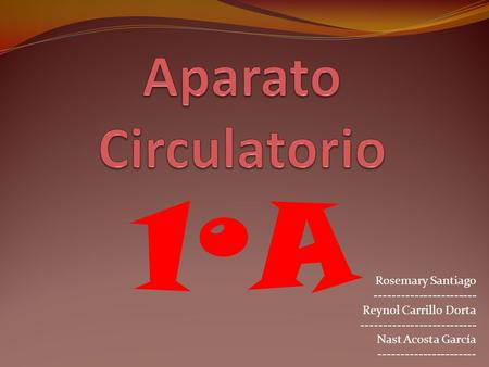 1ºA Aparato Circulatorio Rosemary Santiago