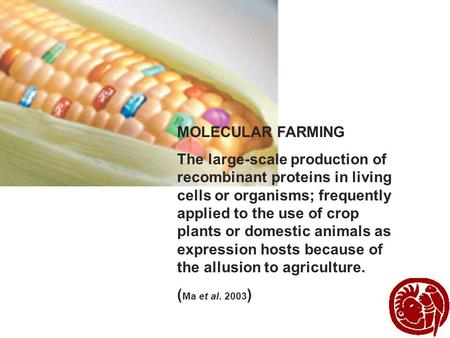 MOLECULAR FARMING The large-scale production of recombinant proteins in living cells or organisms; frequently applied to the use of crop plants or domestic.