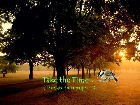 Take the Time Take the Time… (Tómate tu tiempo…)