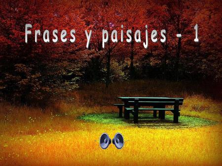 Frases y paisajes - 1.