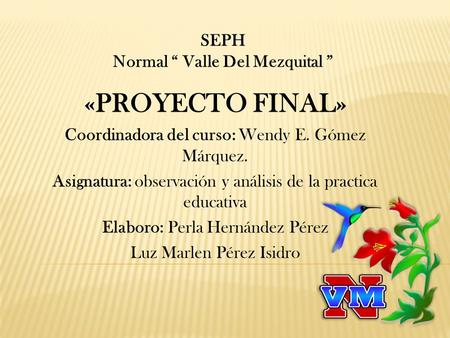 "«PROYECTO FINAL» SEPH Normal "" Valle Del Mezquital """