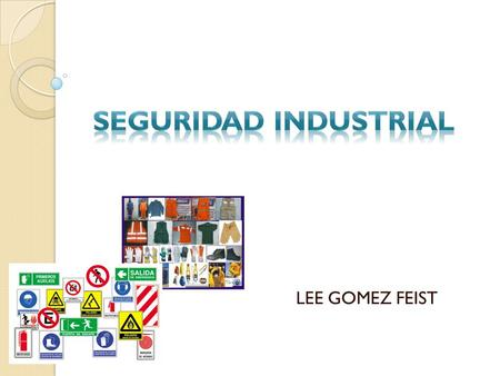 SEGURIDAD INDUSTRIAL LEE GOMEZ FEIST.