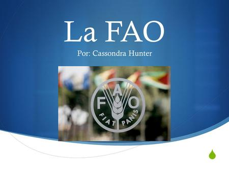 La FAO Por: Cassondra Hunter.