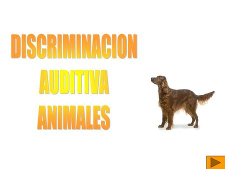 DISCRIMINACION AUDITIVA ANIMALES.