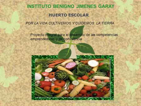 INSTITUTO BENIGNO JIMENES GARAY