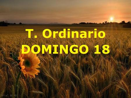 T. Ordinario DOMINGO 18.