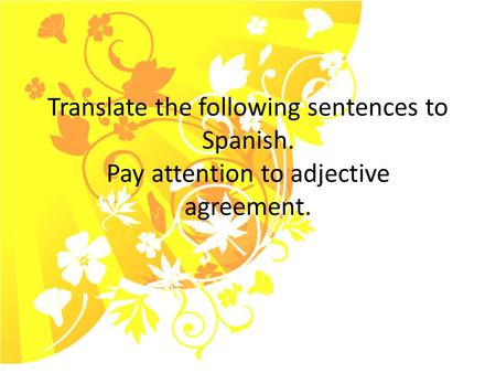 Translate the following sentences to Spanish. Pay attention to adjective agreement.