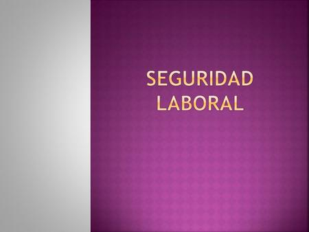 SEGURIDAD LABORAL.