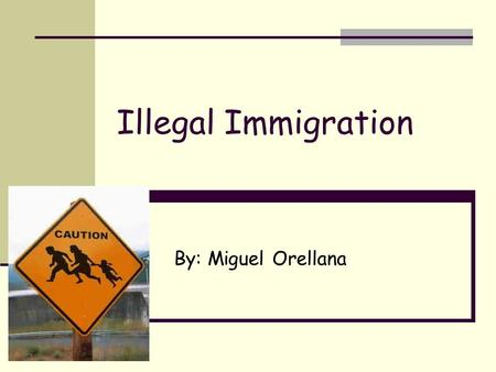 Illegal Immigration By: Miguel Orellana. Format Reasons for illegal immigration Cases Perspectives Connections to AK Solutions.