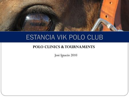 ESTANCIA VIK POLO CLUB POLO CLINICS & TOURNAMENTS José Ignacio 2010.