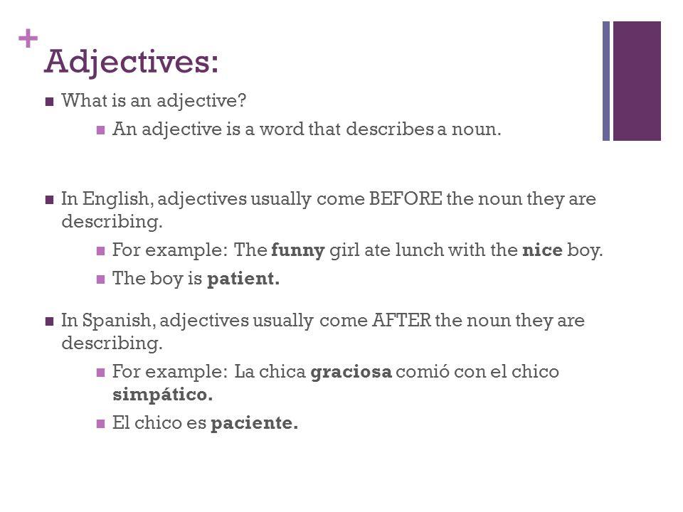 + Masculine & Feminine Adjectives In Spanish, most adjectives have both masculine & feminine forms.