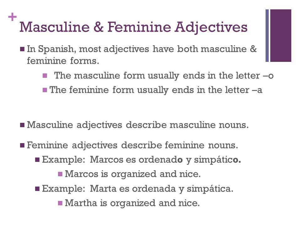 + Adjectives Chart: Nosotros somos ordenados y reservados.