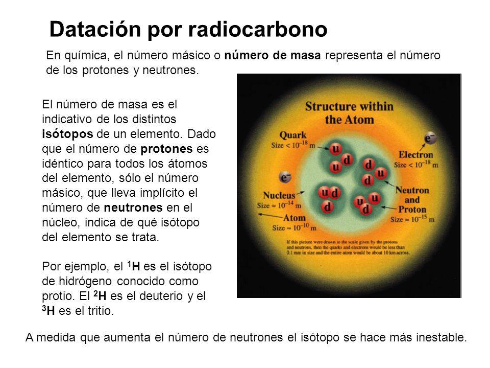 12 C y 13 C son estables.14 C radiocarbono, inestable.