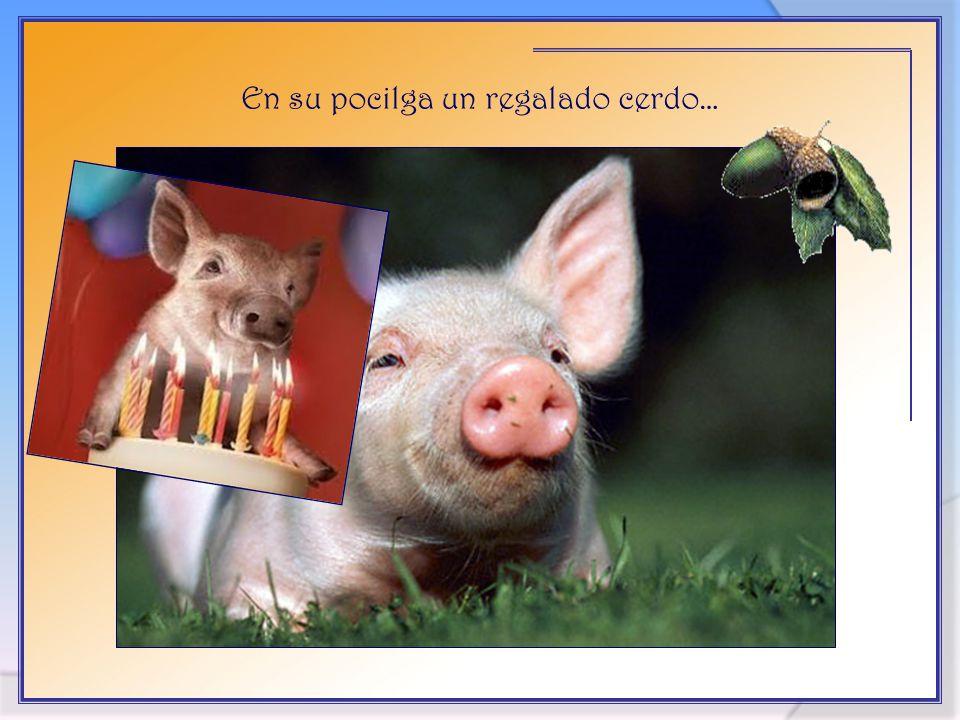 Vita Noble Powerpoints 2008 - 2013 En su pocilga un regalado cerdo…