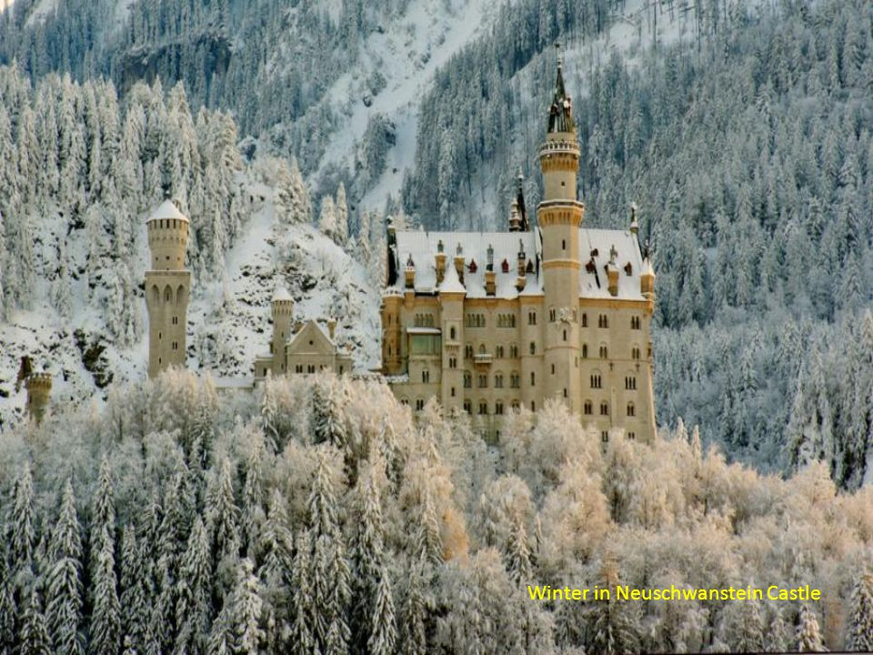 Winter in Neuschwanstein Castle