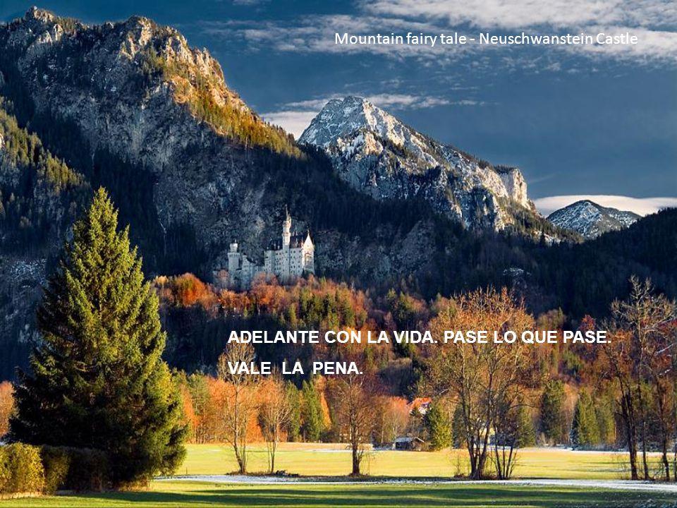 Mountain fairy tale - Neuschwanstein Castle ADELANTE CON LA VIDA. PASE LO QUE PASE. VALE LA PENA.