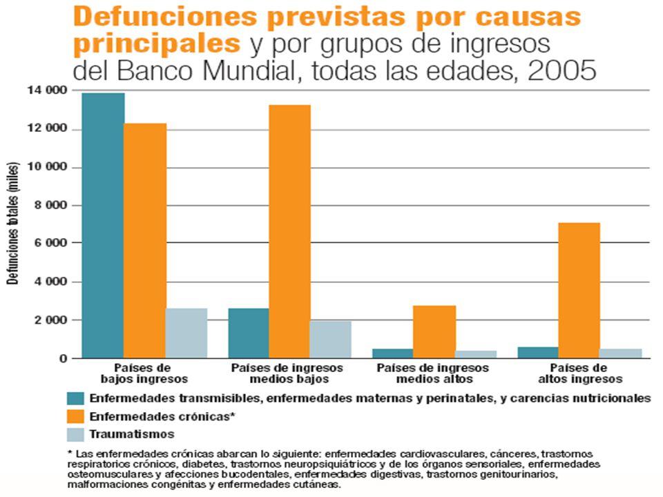 CAUSAS DE MUERTE EN EL MUNDO (%) ENFERMEDADES CARDIOVASCULARES 50% CÁNCER 21% ENF.