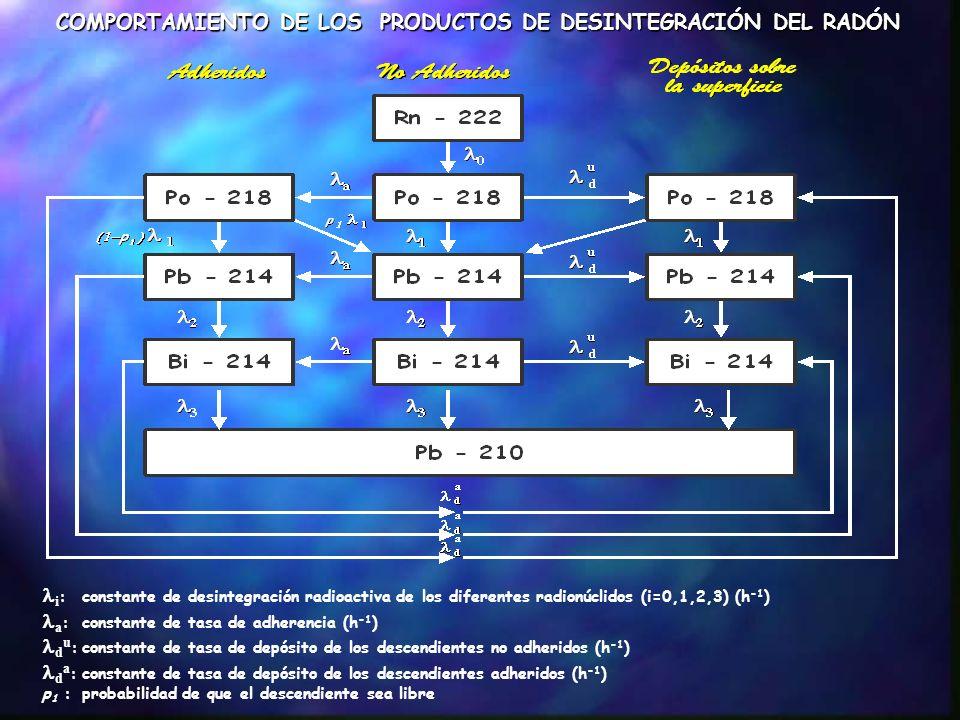 PROCESOS BÁSICOS QUE INFLUYEN EN LA CONCENTRACIÓN DE LOS PRODUCTOS DE DESINTEGRACIÓN DEL RADÓN SON BIEN CONOCIDOS CUALITATIVAMENTE CUANTITATIVAMENTE LA MAYOR INCERTIDUMBRE RADICA EN LA DETERMINACIÓN DE LA TASA DE DEPÓSITO DE LOS PRODUCTOS DE DESINTEGRACIÓN LIBRES