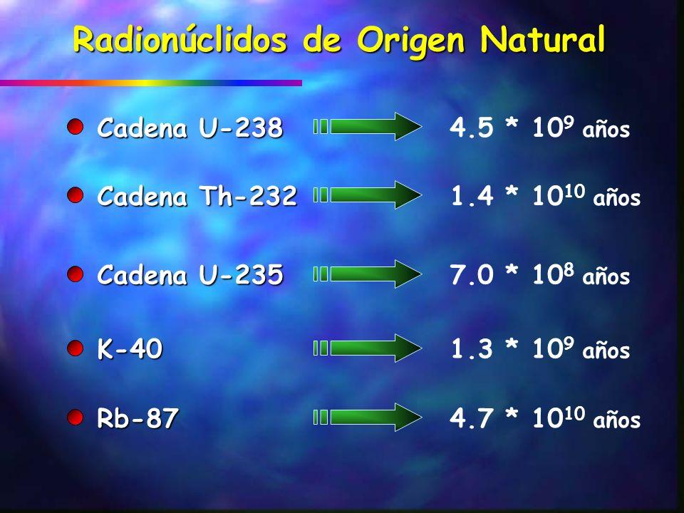 FUENTES NATURALES DE RADIACIÓN Exposición externa n Rayos Cósmicos 0.40.3-1.0 n Rayos gamma terrestres 0.50.3-0.6 Exposición interna n Inhalación 1.20.2-10 n Ingestión 0.30.2-0.8 DOSIS MEDIAS MUNDIALES Fuente Dosis Efectiva Rango Típico (mSv por año) (mSv por año) (mSv por año) (mSv por año) Total 2.4 1–10 UNSCEAR 2000