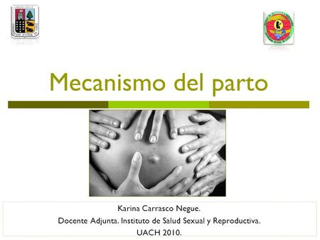 Mecanismo del parto Karina Carrasco Negue. Docente Adjunta. Instituto de Salud Sexual y Reproductiva. UACH 2010.