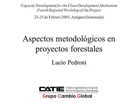 Aspectos metodológicos en proyectos forestales Lucio Pedroni Capacity Development for the Clean Development Mechanism Fourth Regional Workshop of the Project.