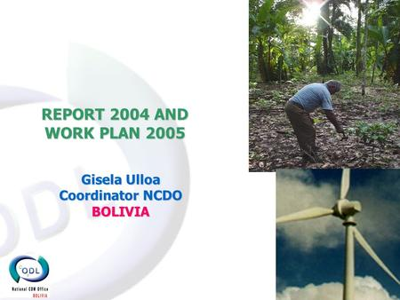 REPORT 2004 AND WORK PLAN 2005 Gisela Ulloa Coordinator NCDO BOLIVIA.