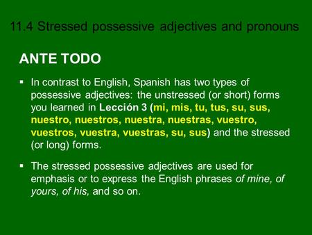 ANTE TODO In contrast to English, Spanish has two types of possessive adjectives: the unstressed (or short) forms you learned in Lección 3 (mi, mis, tu,