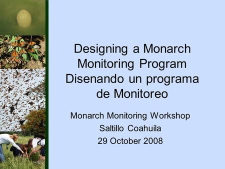 Designing a Monarch Monitoring Program Disenando un programa de Monitoreo Monarch Monitoring Workshop Saltillo Coahuila 29 October 2008.
