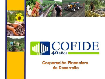 Corporación Financiera