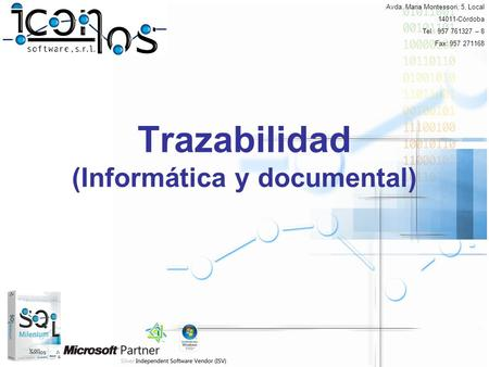 Trazabilidad (Informática y documental)