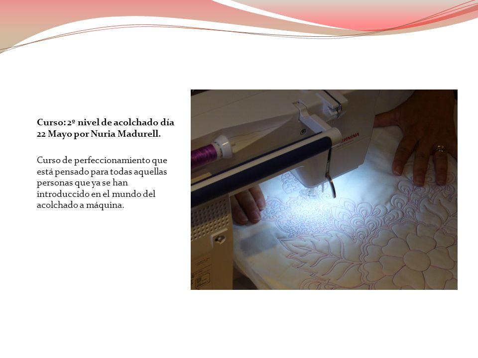 Curso: Editor lite día 11 de Junio por personal Bernina.
